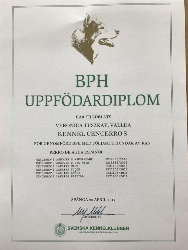 BPH Uppfödardiplom