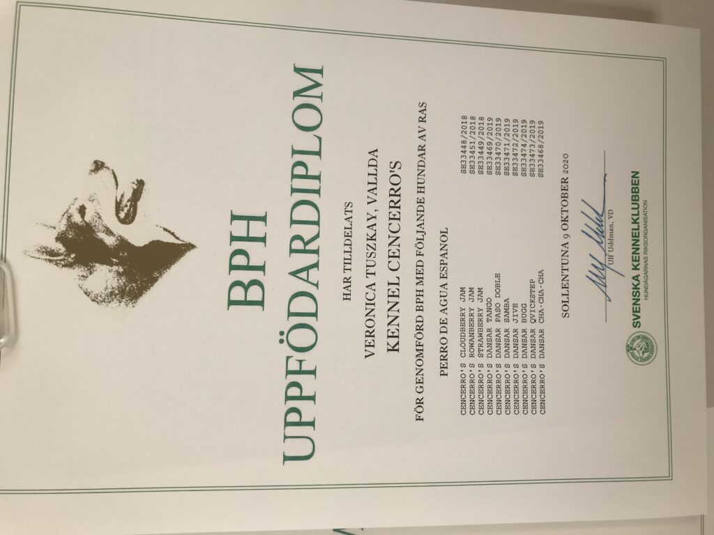 Uppfödardiplom nummer 2